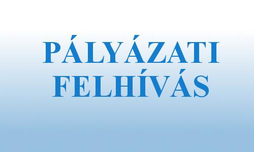 Göd   Pályázat Településellátó Szervezet igazgatói munkakör betöltésére
